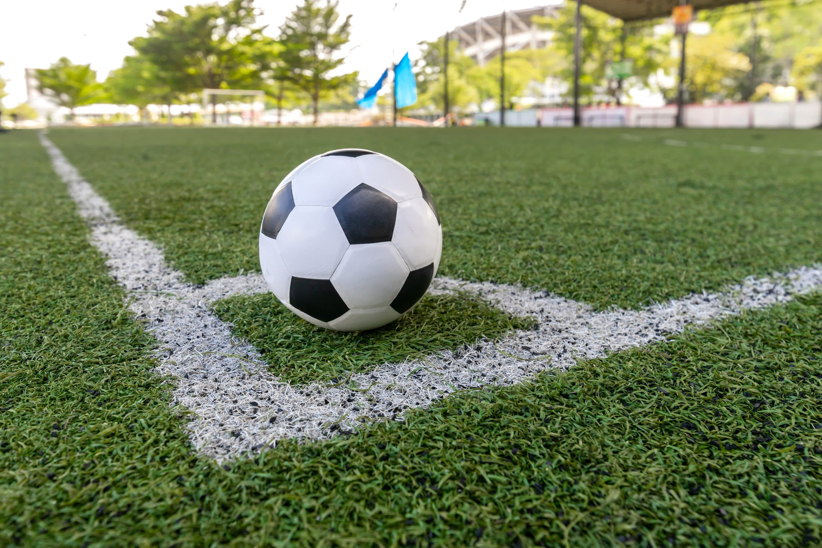 Synthetic Grass - Sports